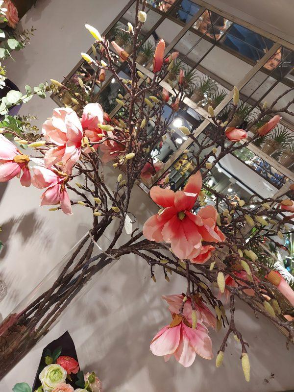 Vera de Magnolias