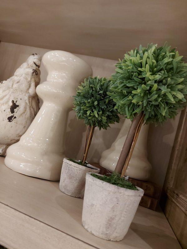 Topiary Bocha Romero