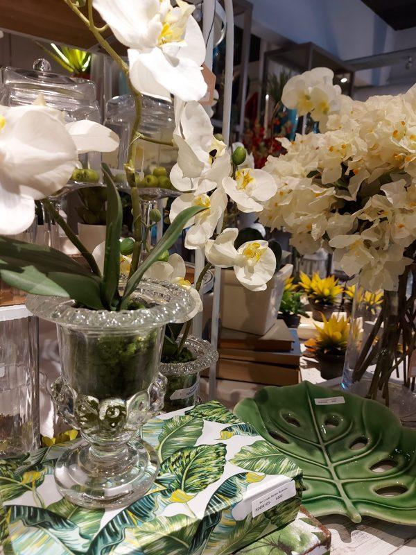 Orquídea En Vidrio